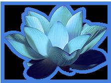 Kundalini Therapie